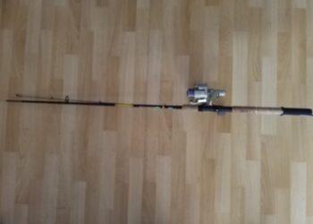 Spin rute mitchell Performance 242 10/30 g barsch hecht zander