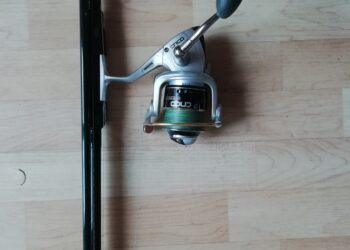 Karpfenrute spro strategy 3lbs, 3,90m