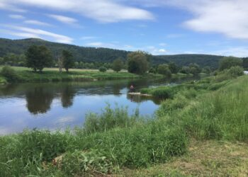 Angelurlaub an der Weser, angeln direkt im FeWo Garten